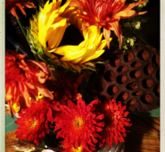 Fall flowers & 'The Friday Fifteen.'