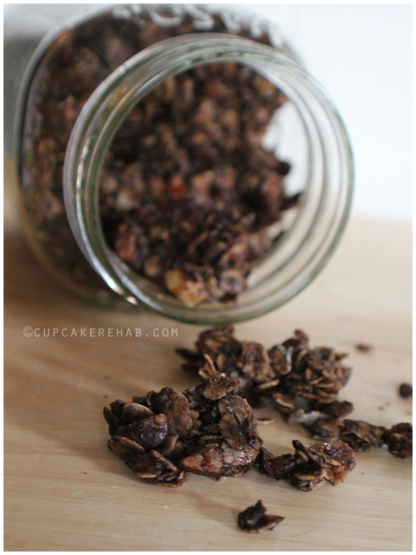 Dark chocolate chocolate chip hazelnut granola.