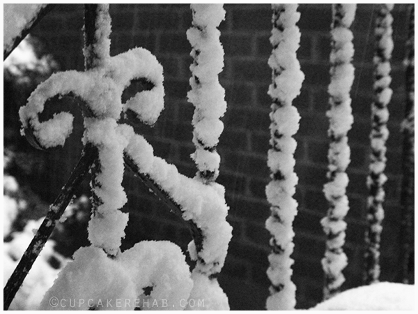 Snowy railings in New York.