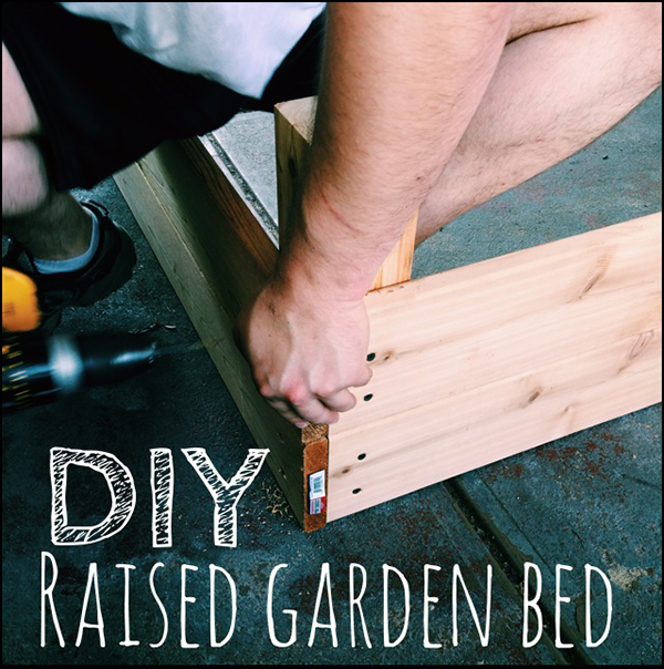 How to build a DIY raised garden bed!