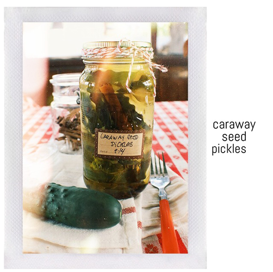Caraway seed pickle recipe.
