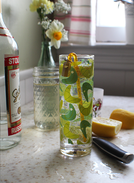 A simple simple syrup & vodka cocktail, with lemon and lime.