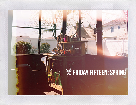 Friday Fifteen: Spring | Sunny screened-in back porch.