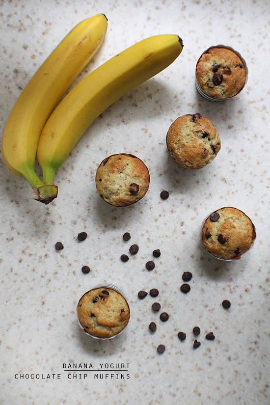 Banana yogurt chocolate chip muffins from http://cupcakerehab.com!