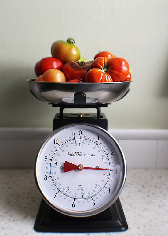 Weighing tomatoes before making fresh garden salsa (canned!)