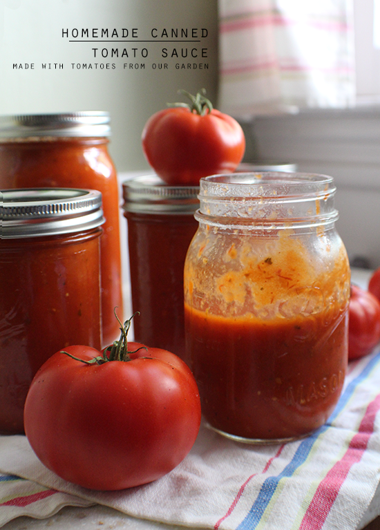 Canned tomato sauce.